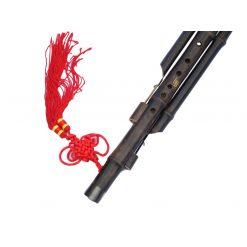 הולוסי חליל סיני דלעת